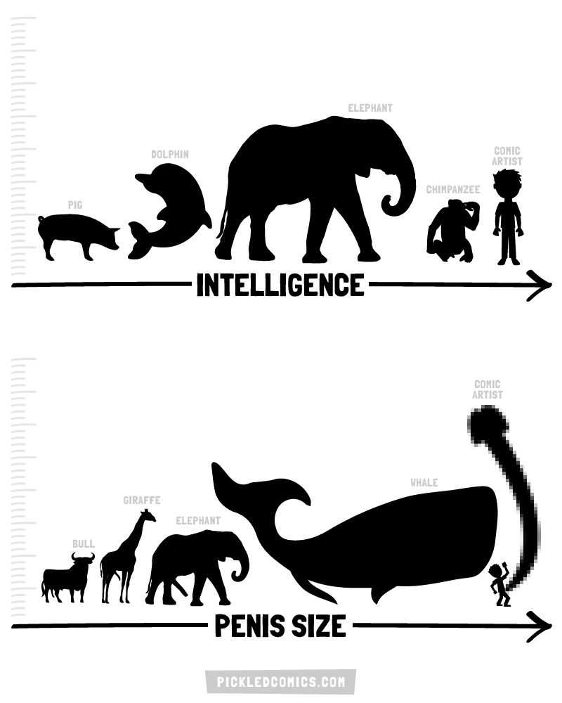 Intelligence and Penis Size in the Animal Kingdom.