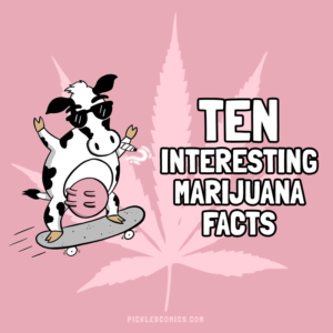 10 Interesting Marijuana Facts